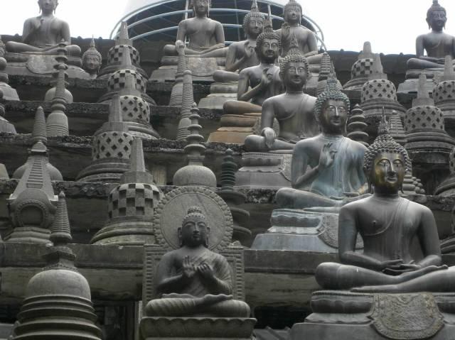 P2151319 buddhas