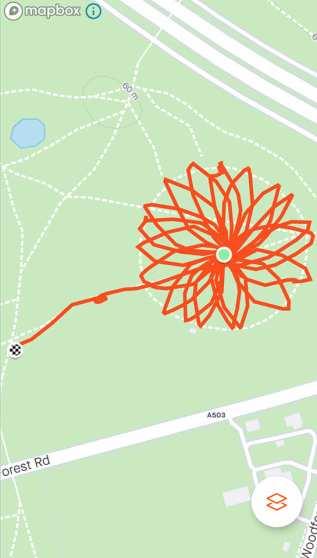 Strava Art flower